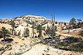 Bryce Canyon (15201824228).jpg