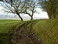 Byway near Llangwyfan. - geograph.org.uk - 624544.jpg