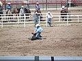 CFD Tie-down roping Trey Young -3.jpg
