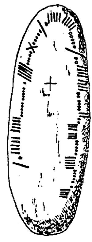 Corcu Duibne - Image: CIIC 156 (Richard Brash, 1879)