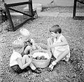 COLLECTIE TROPENMUSEUM Kinderen bij een mand met jonge poesjes Malang TMnr 10013755.jpg
