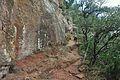Camino de la cueva del nialo-montblanc-2013.JPG