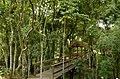 Campo Comprido, Curitiba - State of Paraná, Brazil - panoramio (6).jpg