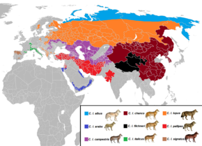 Canis lupus subspecies range Eurasia.png