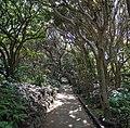 Cape Ashizuri - 足摺岬 - panoramio (1).jpg