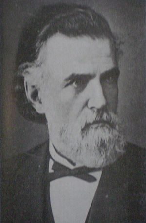 Argentine presidential election, 1880 - Image: Carlos Tejedor
