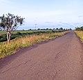 Carretera por la Morrocoya, Estado Monagas.jpg