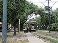 Carrollton New Orleans 1 July 2020 - By Carrollton Avenue and Oak Street - Streetcar stop.jpg