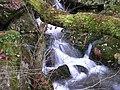Cascada, muiños de Parafita - panoramio.jpg