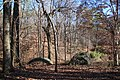 Cascade Springs Nature Preserve, Atlanta, December 2018 6.jpg