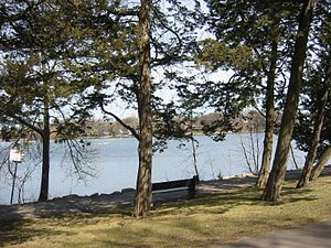 Cedar Lake (Minneapolis) - View from the west shore (early spring 2006).  The shore is lined with Eastern Red Cedar trees that give the lake its name, the IDS Center is visible in the background.