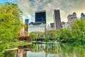 Central Park - NYC.jpg
