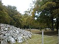 Chambered Cairns and Standing Stones at Balnuarin - geograph.org.uk - 1533566.jpg