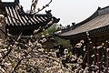 Changdeokgung - panoramio (3).jpg