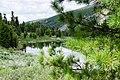 Chemalsky District, Altai Republic, Russia - panoramio (28).jpg