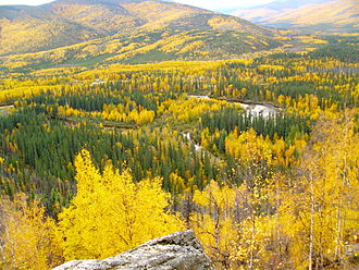 Chena River State Recreation Area - The Chena River seen from the Angel Rocks tor formation (September 2011).