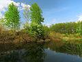 Chervyak lake Muromets2.JPG