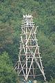 Chichibu Ryusei (Japanese traditional rocket festibal) (1935455426).jpg