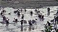 China1982-198.jpg