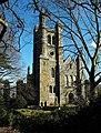 Christ Church, Welshpool - geograph.org.uk - 1173835.jpg