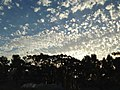 Clouds at UCSD 3 2013-08-24.jpg