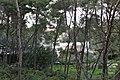 Coastline in Puglia - panoramio (4).jpg