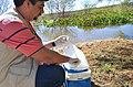 Coleta de amostra de água (28847695257).jpg