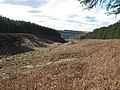 Colster Cleugh - geograph.org.uk - 1221147.jpg