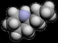 Molecular spacefill of Coniine