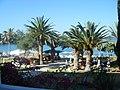Coral beach hotel paphos - panoramio (1).jpg