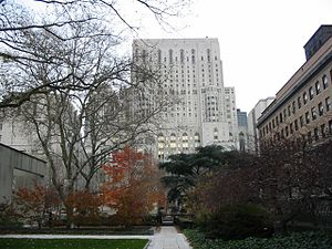 Weill Cornell Medicine - Weill Medical Center from Rockefeller University