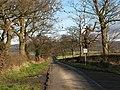 Country Lane to Sowerby Grange - geograph.org.uk - 323080.jpg