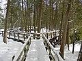 Crawford Lake Trail, Ontario, Canada4.JPG