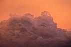 Cumulonimbus sunset detail, Albury NSW Australia.jpg