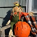 Cute Scarecrow With A Pumpkin (15213558729).jpg