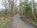 Cycle Path Along Chorlton Brook - panoramio.jpg