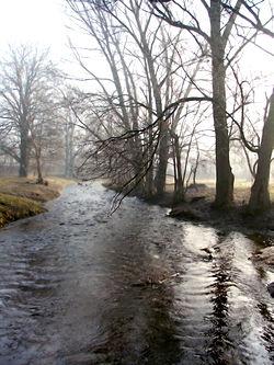 Czarna Hańcza, jedyna rzeka przepływająca przez Suwałki, jest nadal stosunkowo zanieczyszczoną rzeką, mimo występowania w jej dalszym biegu wyjątkowo licznych ostoi bobrów – przykład ochrony przyrody w konflikcie z gospodarką.
