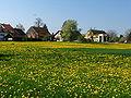 Dübendorf - Hermikon - Glatt IMG 6530.jpg