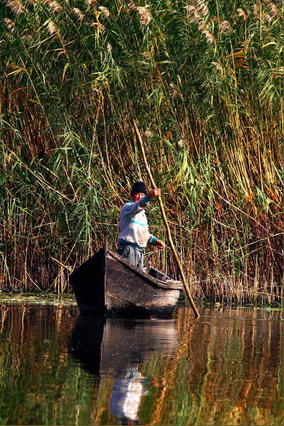 Danube Delta, fisherman