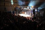 Darius Rucker performs for service members in Spain 141116-N-UI568-114.jpg