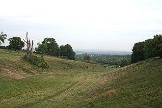 West Horsley - Image: Daws Dene (geograph 3692885)