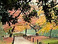 December view - Korakuen (Okayama) - DSC01571.JPG