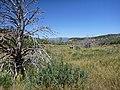 Deer Trap Mountain Trail - panoramio (2).jpg