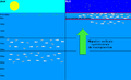 Différence de répartition du macroplancton entre le jour et la nuit.PNG