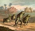 Discontentedfrogs-05.png