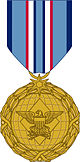 Distinguished Warfare Medal.jpg