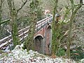 Dolgoch Viaduct - geograph.org.uk - 1636467.jpg