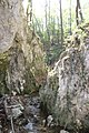 Dolina rečice Perast 28.jpg