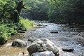 Dolina reke Vučjanke 30.jpg
