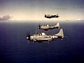 Douglas SBDs in flight in October 1943.jpg